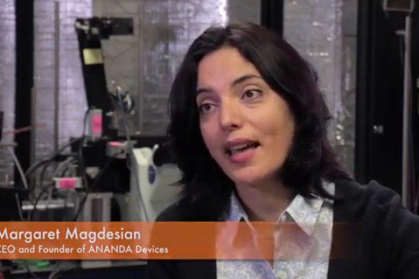 Ananda CEO